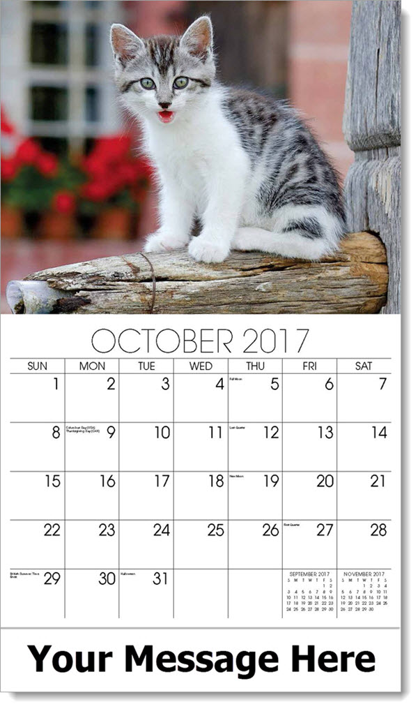 Organization Event Calendar : Kitty calendar kittens cat promo