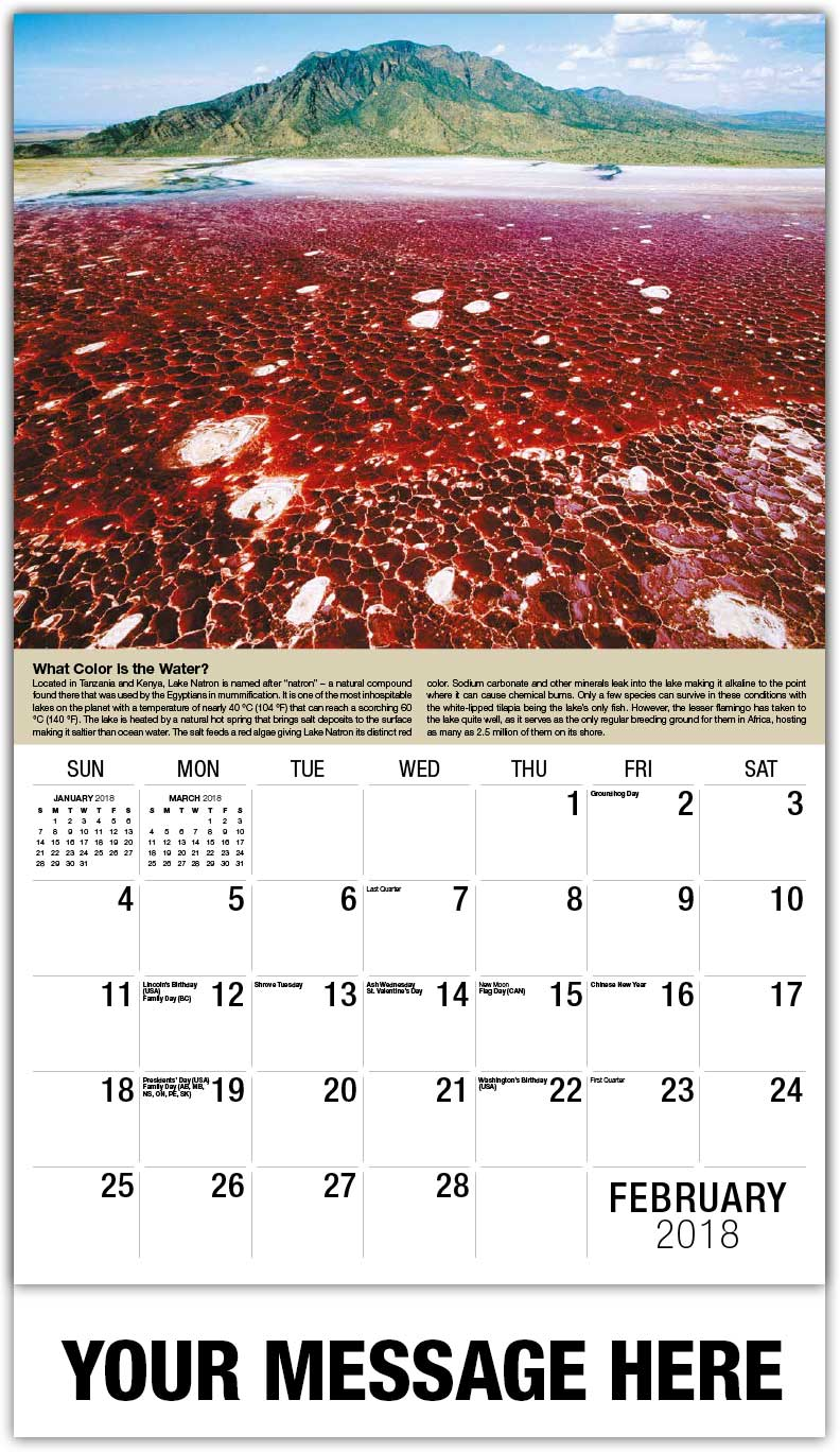 Planet Earth Calendars 65 162 World Ecology Promotional
