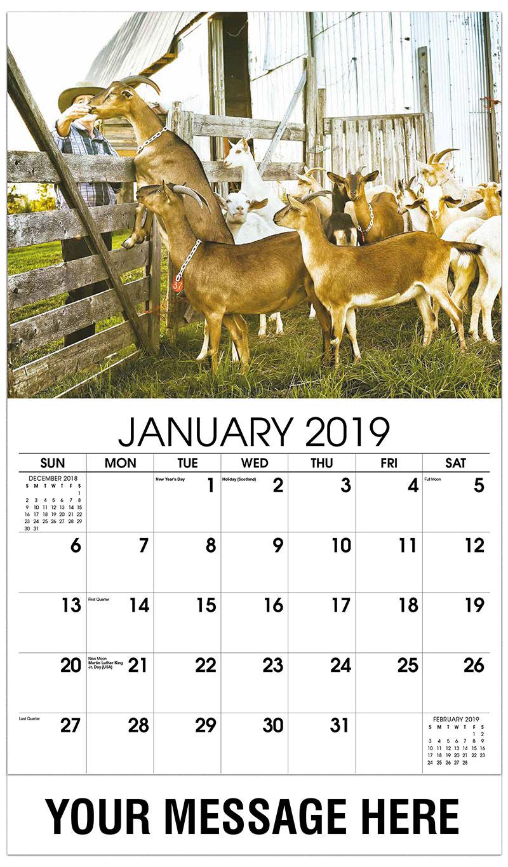 2019 Promotional Calendar - Farmer Feeding His Goats - January