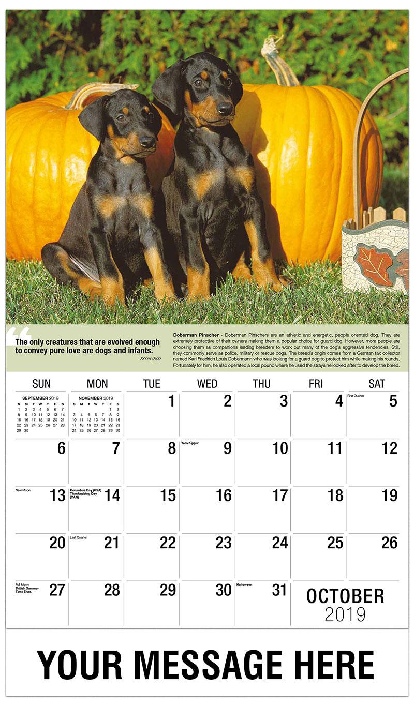 2019 Promo Calendar - Doberman Pinschers Pups - October