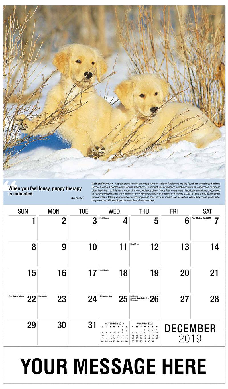 2019 Promo Calendar - Golden Retriever Pups - December_2019
