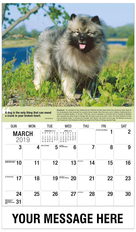 2019 Promotional Calendar - Keeshond - March