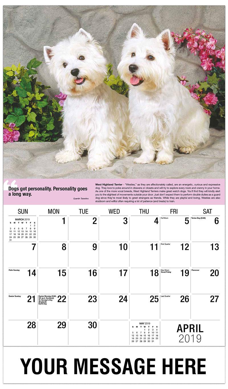 2019 Promotional Calendar - West Highland Terriers - April