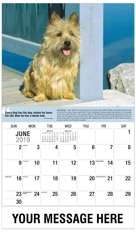 2019 Promotional Calendar - Cairn Terrier - June