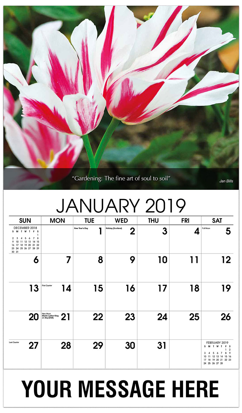 2019 Promo Calendar - Red And White Tulips - January