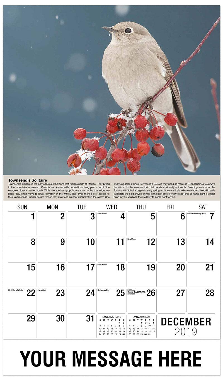 2019 Advertising Calendar - Townsend's Solitaire - December_2019