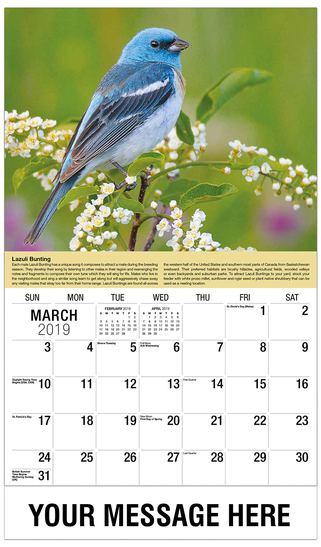 2019 Promo Calendar - Lazuli Bunting - March