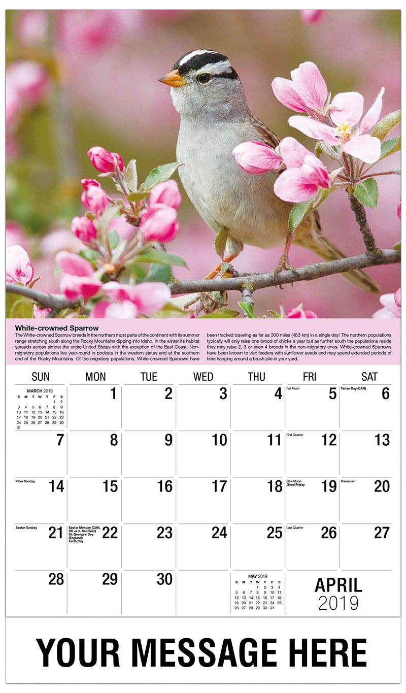 2019 Promo Calendar - White-Crowned Sparrow - April