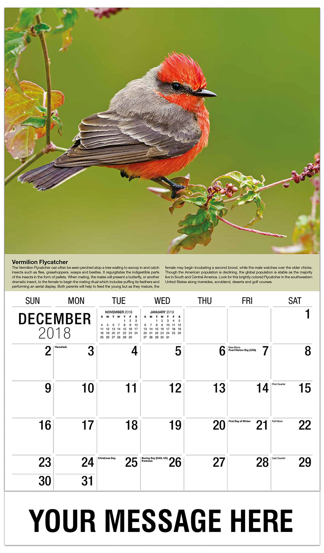 2019 Promotional Calendar - Vermilion Flycatcher - December_2018
