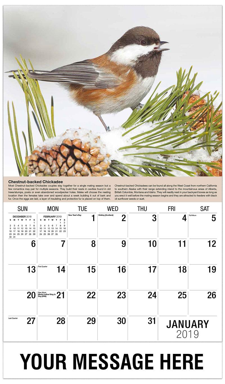 2019 Promotional Calendar - Chestnut-Backed Chickadee - January