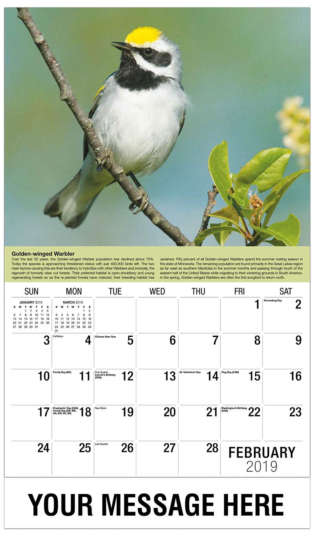 2019 Promotional Calendar - Golden-Winged Warbler - February