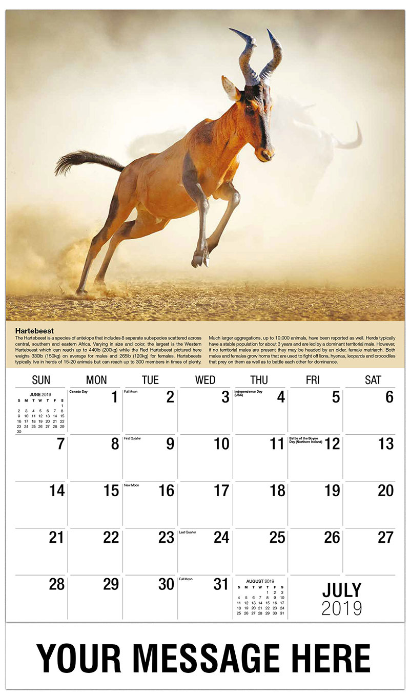 2019 Business Advertising Calendar - Hartebeest - July