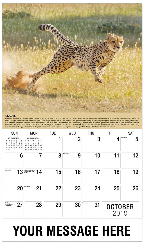2019 Business Advertising Calendar - Cheetah - October