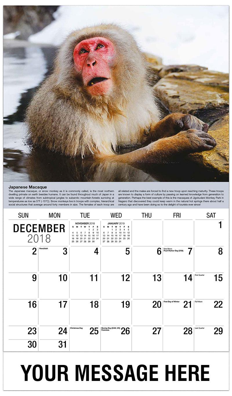 2019 Promo Calendar - Japanese Macaque - December_2018
