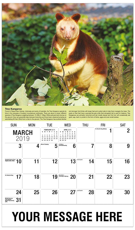 2019 Promotional Calendar - Tree Kangaroo - March