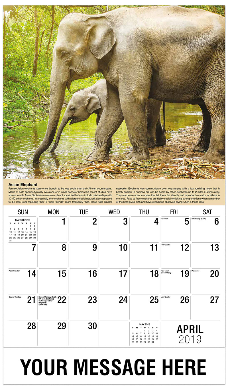 2019 Promotional Calendar - Elephants in a Forest - April