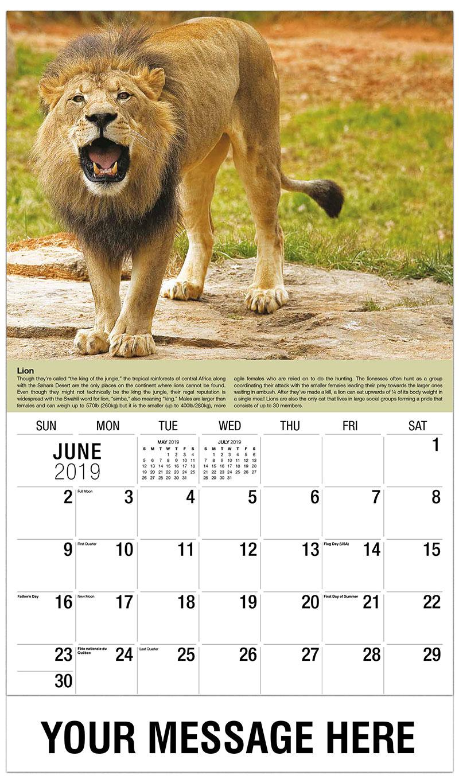 2019 Promotional Calendar - Lion - June