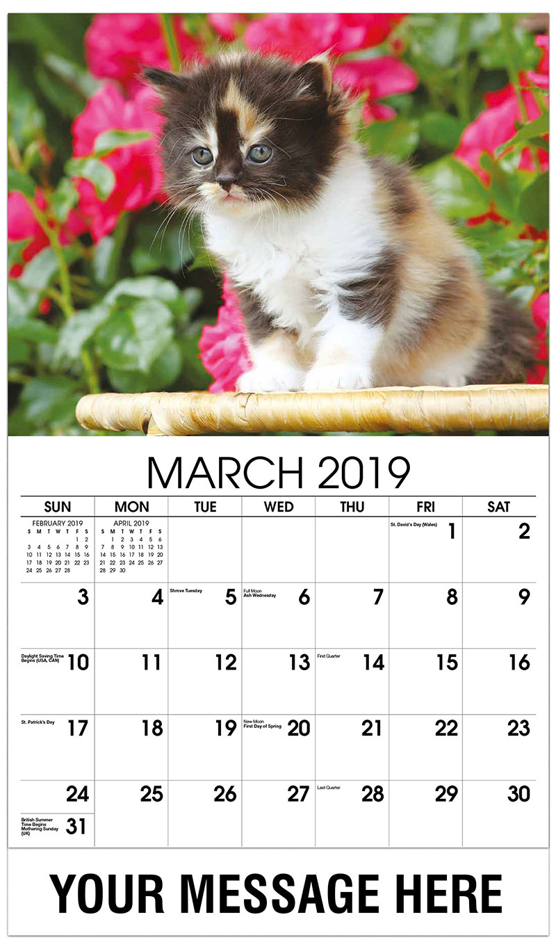 2019 Promo Calendar - Kitten With Roses in Background - March