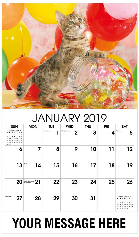 2019 Promotional Calendar - Kitten with Balloons - January
