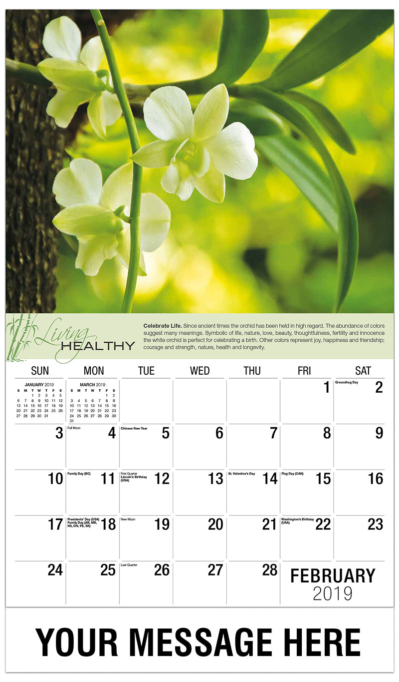2019 Promotional Calendar - Orchid - February