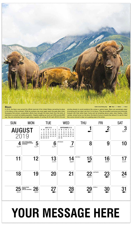 2019 Business Advertising Calendar - Bison - August