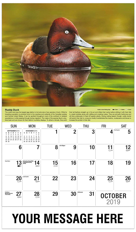 2019 Business Advertising Calendar - Ruddy Duck - October