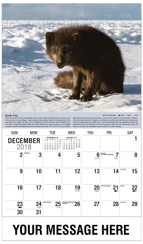 2019 Promotional Calendar - Arctic Fox - December_2018
