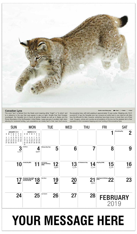 2019 Promotional Calendar - Canada Lynx - February