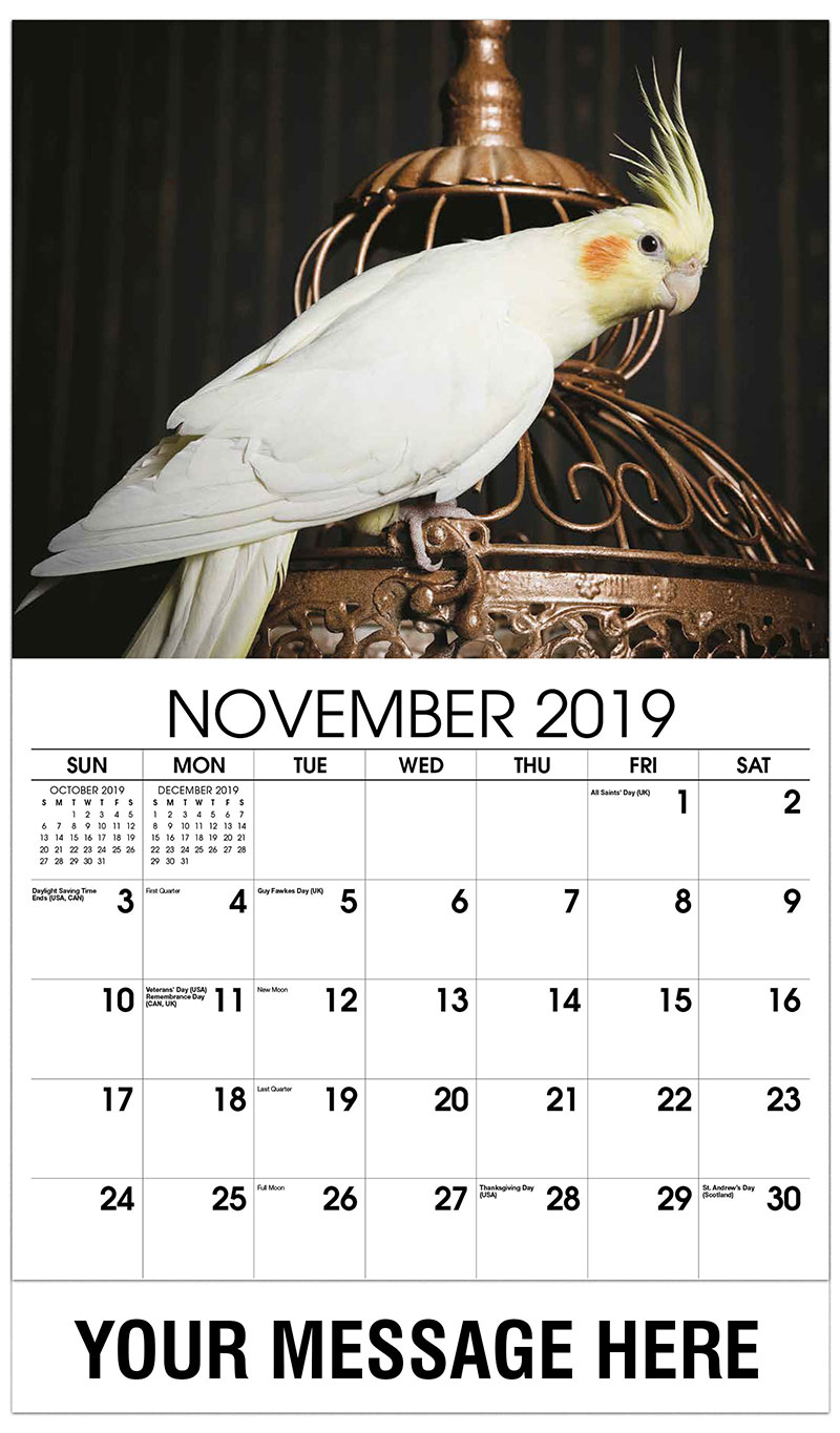 2019 Advertising Calendar - White Bird - November