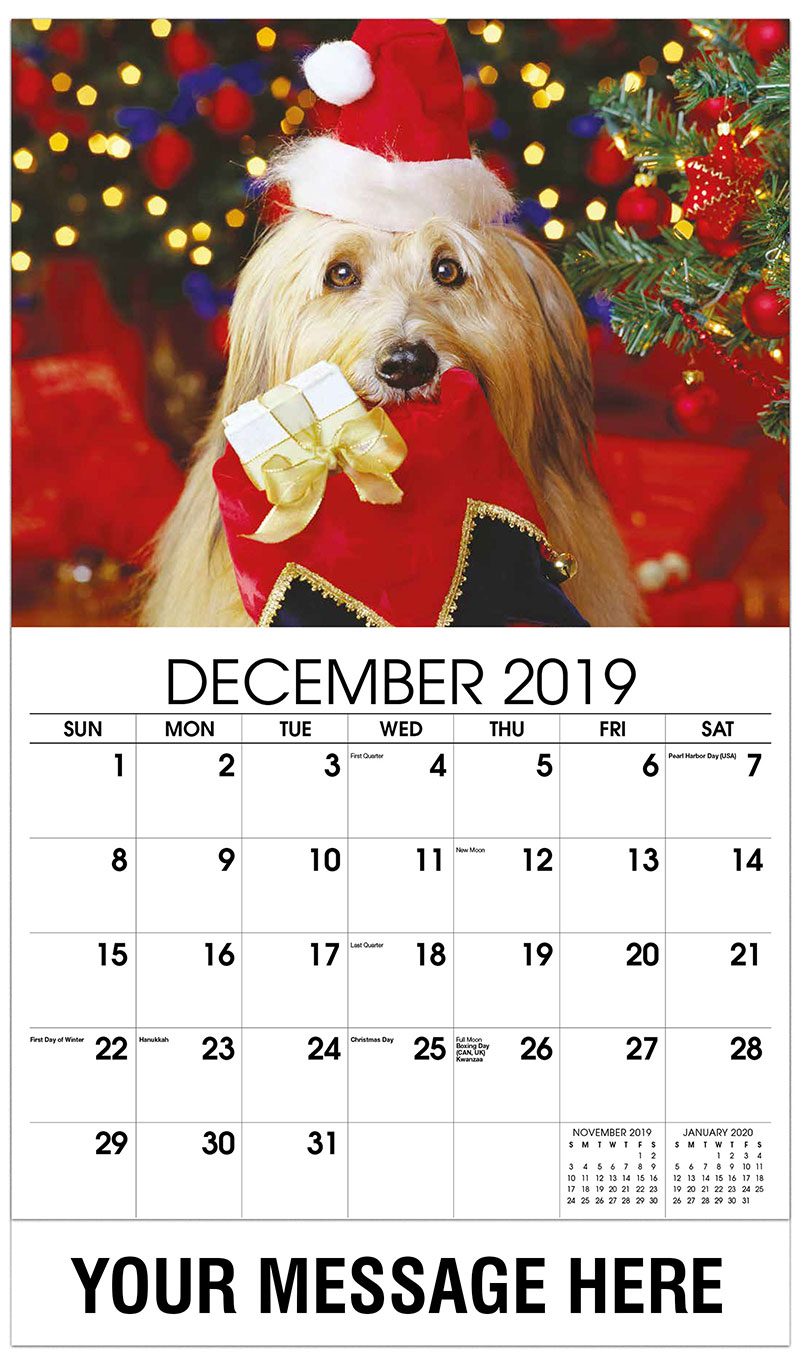 2019 Advertising Calendar - Dog With Santa Hat - December_2019