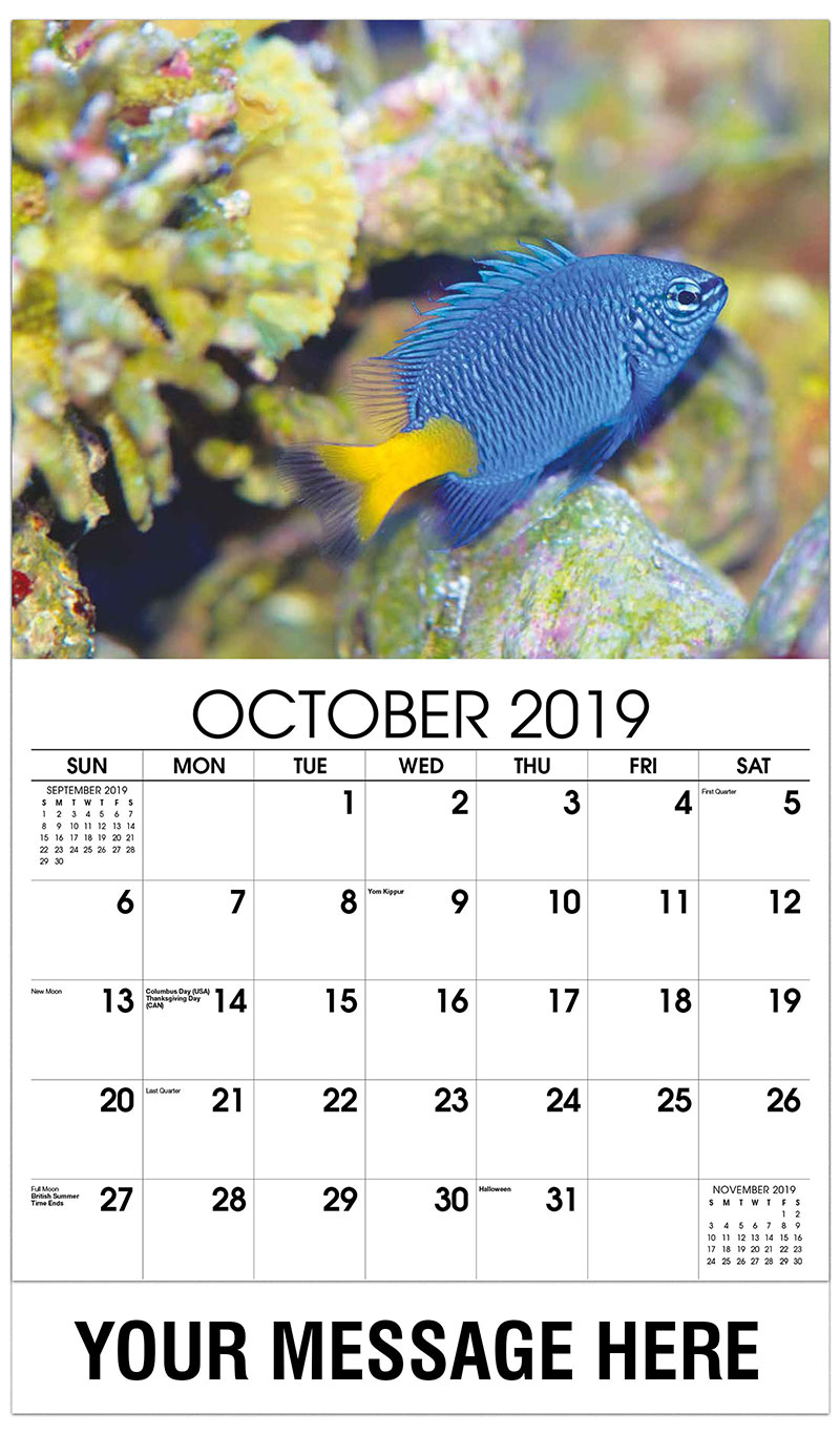 2019 Business Advertising Calendar - Blue Fish - October