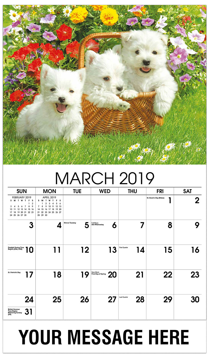 2019 Promo Calendar - 3 White Dogs - March