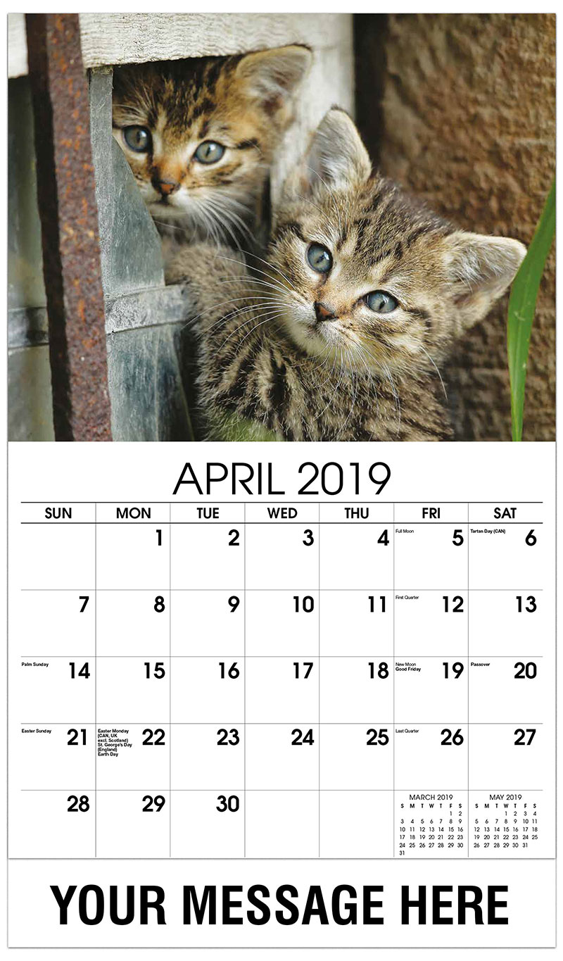 2019 Promo Calendar - Two Grey Tabby Kittens - April