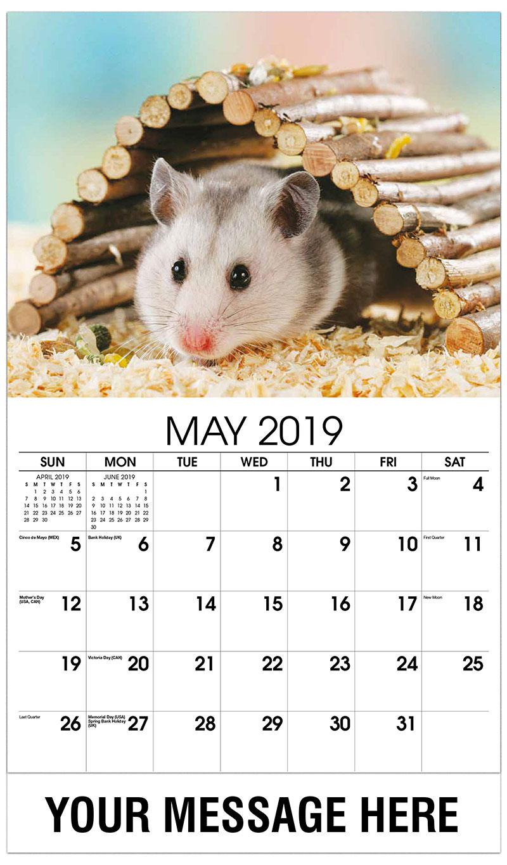 2019 Promo Calendar - Hamster - May