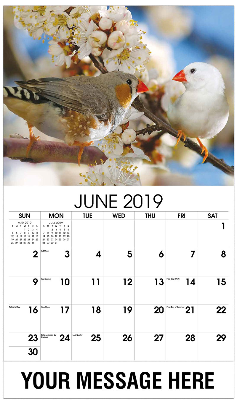 2019 Promo Calendar - Two Birds - June