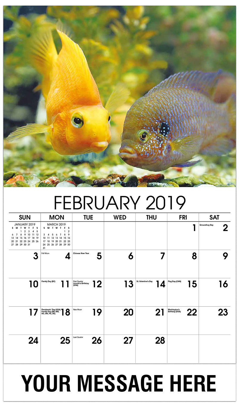 2019 Promotional Calendar - Two Fish - February