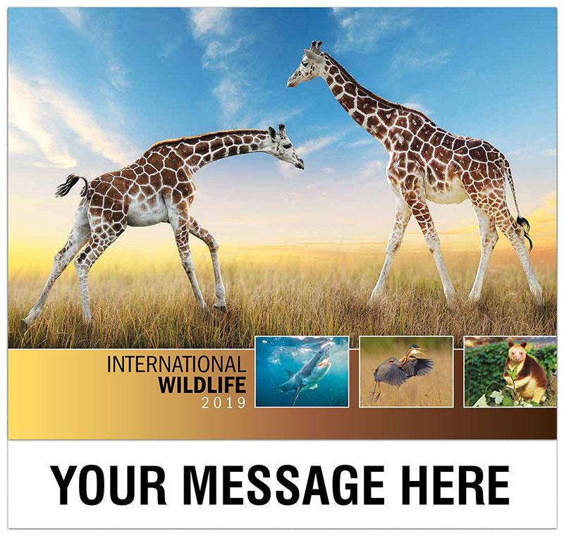 International Wildlife