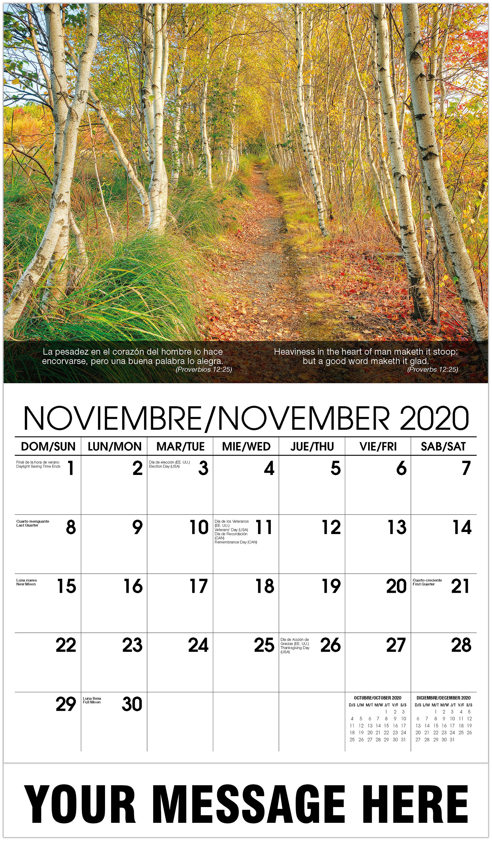 2020 Bilingual Advertising Calendar - Trees In Autumn - November