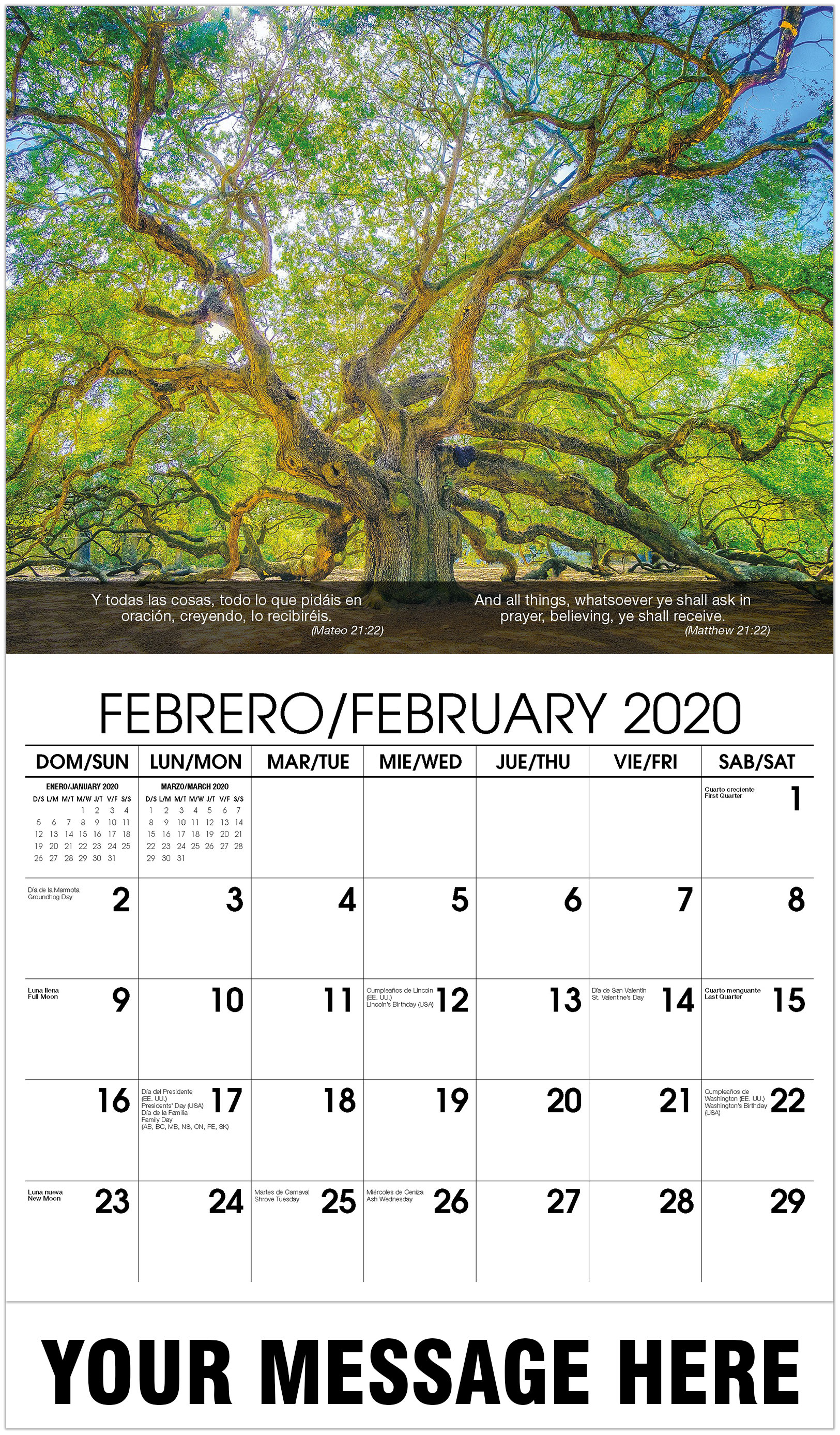 2020 Bilingual Promo Calendar - Tree - February