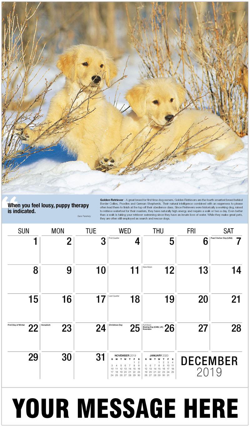 2020 Advertising Calendar - Golden Retriever Puppies - December_2019