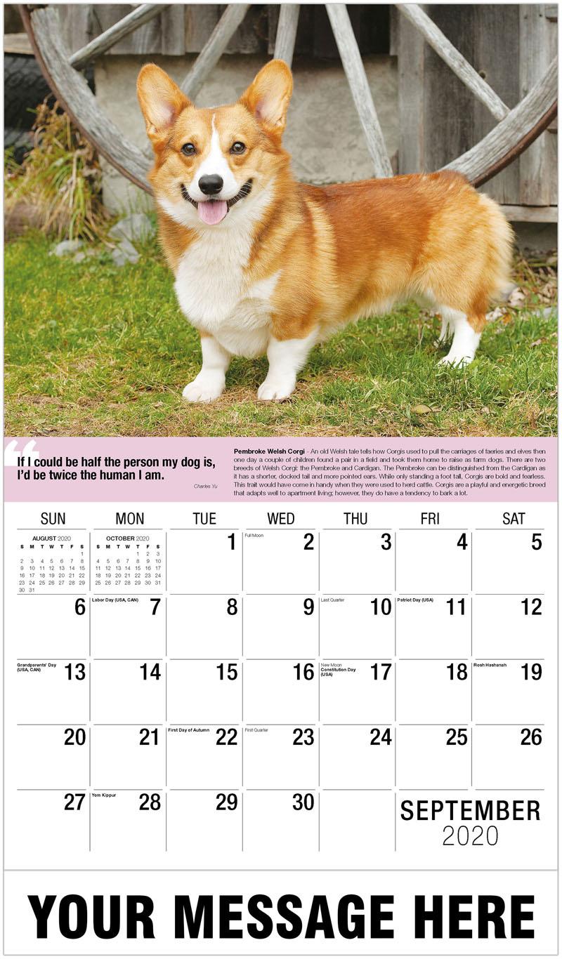 2020 Promo Calendar - Pembroke Welsh Corgi - September