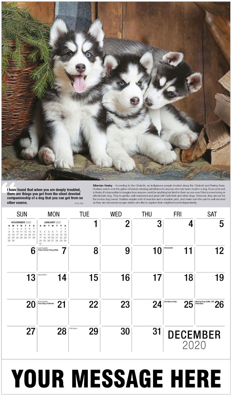2020 Promo Calendar - Siberian Husky Puppies - December_2020