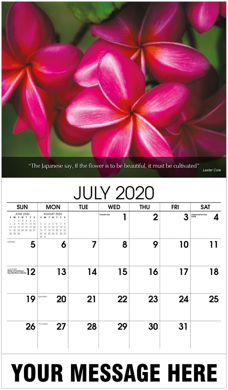 2020 Business Advertising Calendar - Close Up Of Frangipani - July