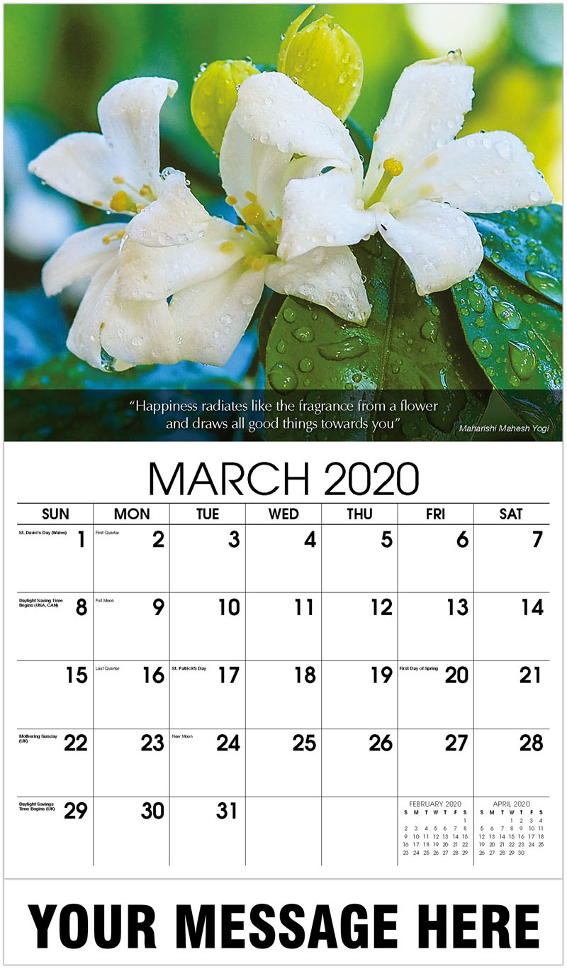 2020 Promotional Calendar - Close-Up Of Water Drops On Flower - March