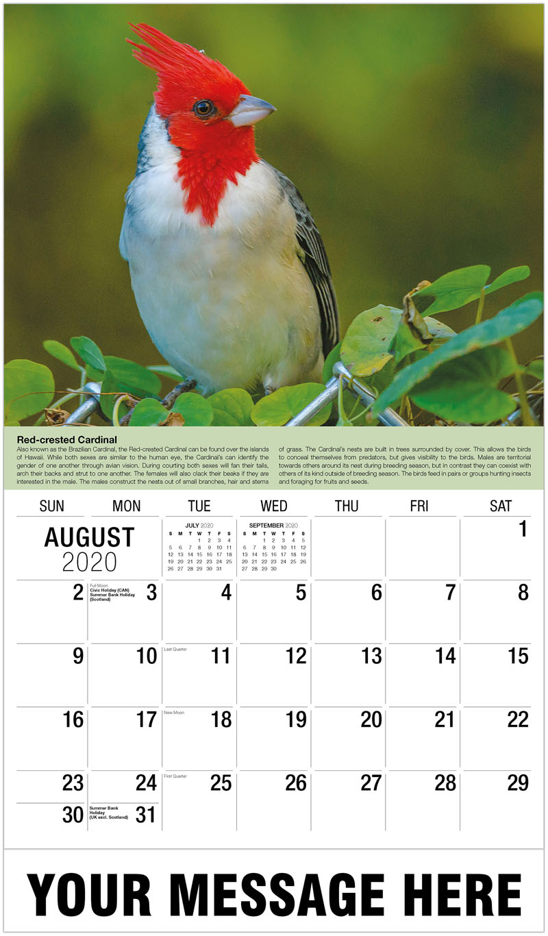 2020 Business Advertising Calendar - Two Barn Swallows - August