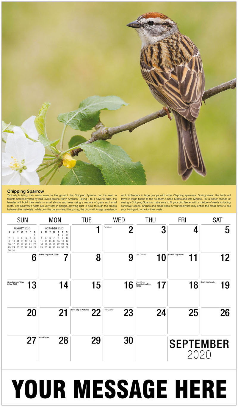 2020 Business Advertising Calendar - Red-Crested Cardinal - September