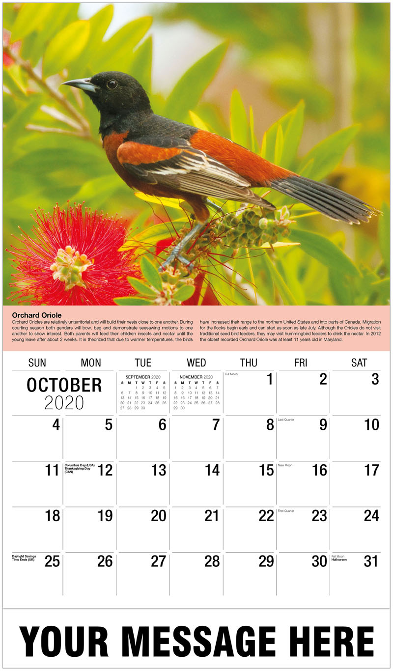 2020 Business Advertising Calendar - Chipping Sparrow - October