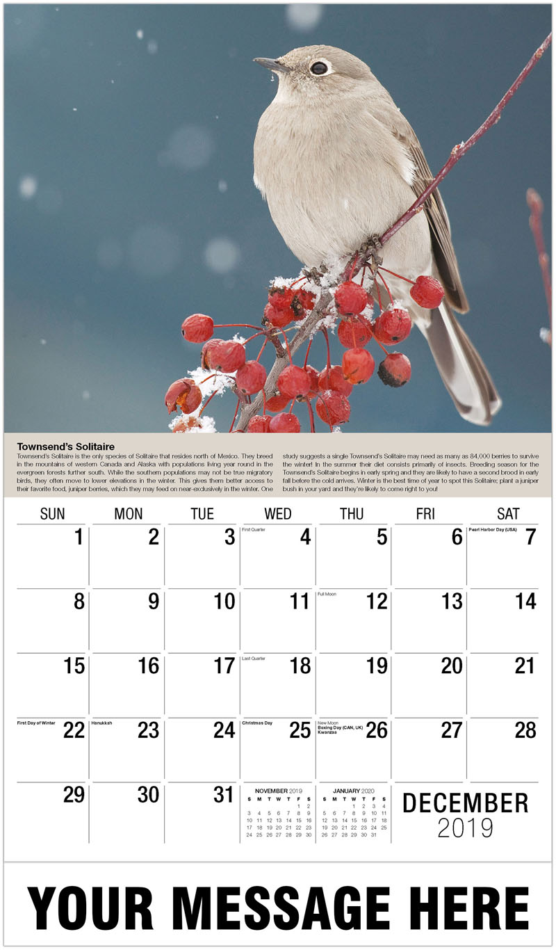 2020 Promotional Calendar - Townsend'S Solitaire - December_2019