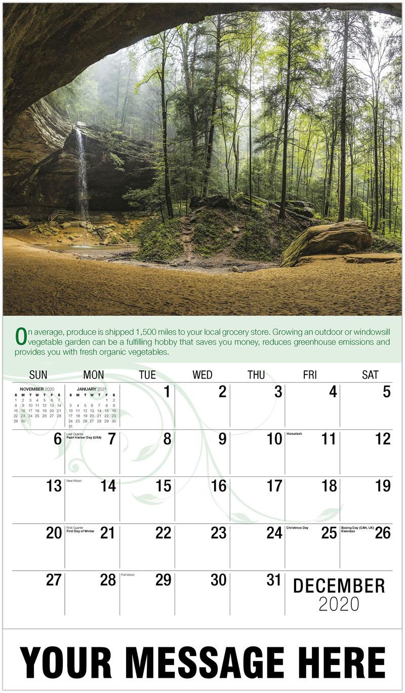 2020 Advertising Calendar - Forest Cave - December_2020