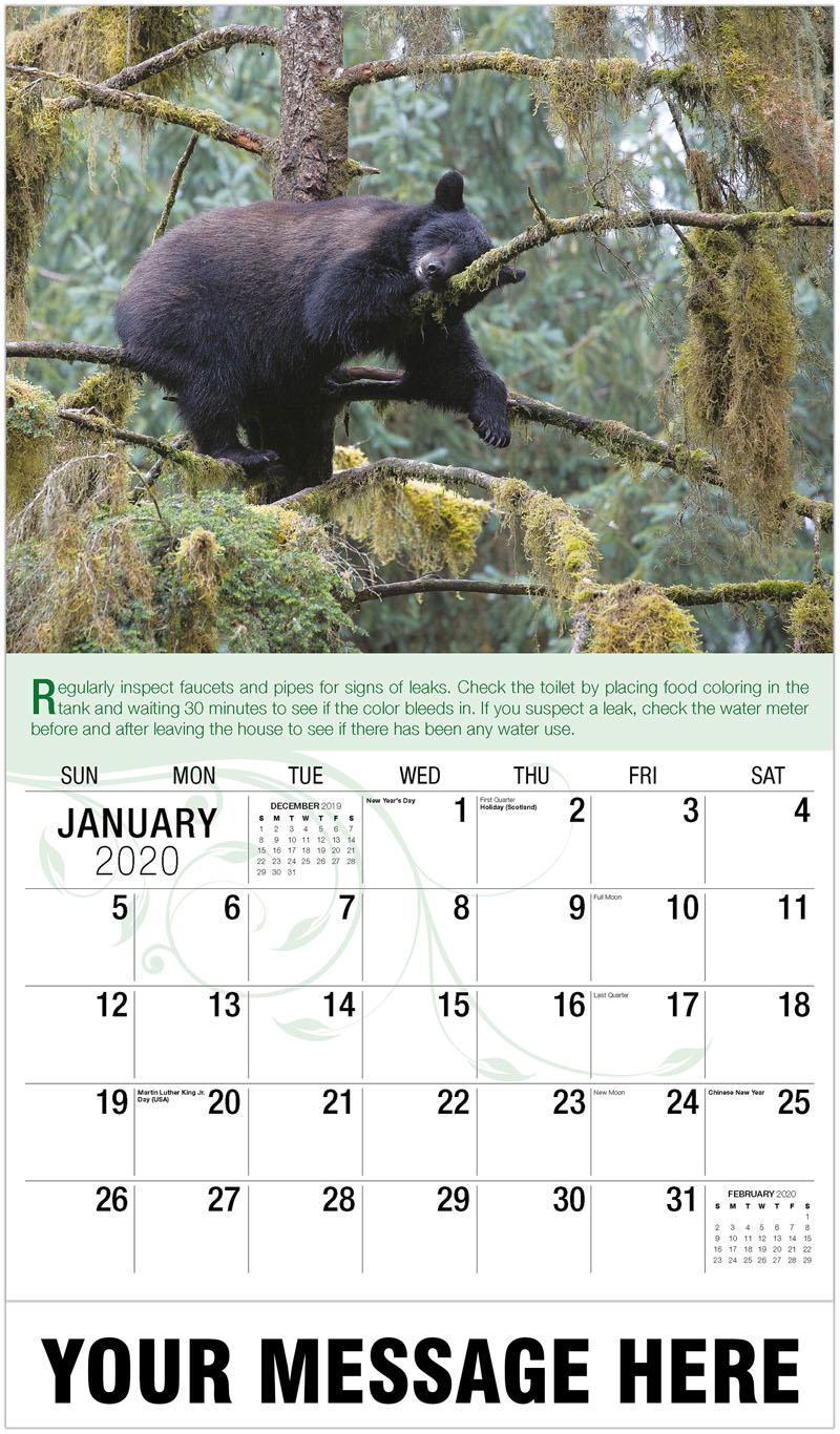 2020 Promo Calendar - Black Bear - January
